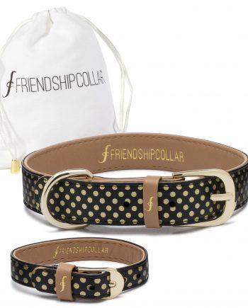 Dotty Friendship Collar
