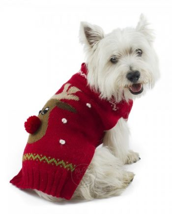 red rudolph jumper